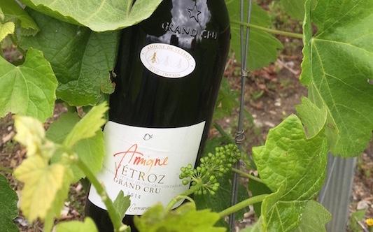 Swiss Wine JR Germanier vin Bio award